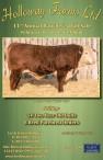 11th Annual Rancher's Bull Sale