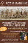 38th annual PERFORMANCE TESTED CHAROLAIS BULL SALE