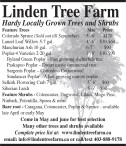 Linden Tree Farm