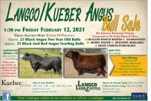 Langco/Kueber Angus Bull Sale